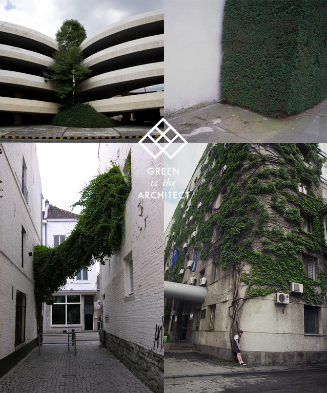 GreenIsTheArchitect MOODS: Green Concrete on thisispaper.com